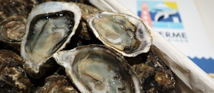 Conserver les huîtres dans les meilleures conditions